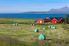 Beautiful landscape, Iceland. Royalty Free Stock Photos