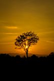 Beautiful landscape image with sun and trees silhouette at sunse Stock Photo
