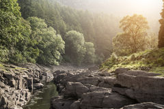 Beautiful landscape image of sunlight streaming through trees in Royalty Free Stock Image