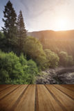 Beautiful landscape image of sunlight streaming through trees in Stock Images