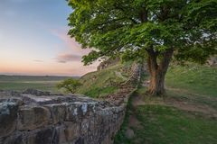 Beautiful landscape image of Sycamore Gap at Hadrian`s Wall in N. Stunning landscape image of Sycamore Gap at Hadrian`s Wall in Northumberland at sunset with Royalty Free Stock Photo