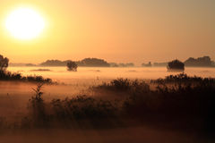 Beautiful Landscape In The Foggy Morning Royalty Free Stock Photo