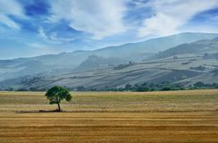 Beautiful landscape in Italian countryside with hills and mountains on background Stock Photos
