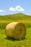 Beautiful landscape in Italy. Bales oh hay in the italian country stock image