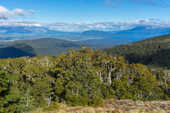 Beautiful landscape of Kepler Track Stock Photo