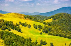 Beautiful landscape of Krasna mountain ridge. Grassy slopes and forested hill under the blue summer sky with fluffy clouds. location Carpathian mountains Royalty Free Stock Photography