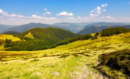 Beautiful landscape of Krasna mountain ridge. Grassy slopes and forested hill under the blue summer sky with fluffy clouds. location Carpathian mountains Stock Image