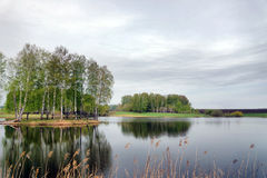 Beautiful landscape with a lake and birch trees in gloomy day Royalty Free Stock Images