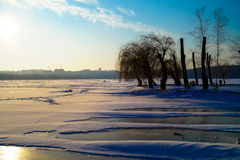 Beautiful landscape of the lake is covered with ice in the center of the city Royalty Free Stock Images