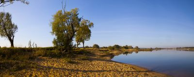 Lake early in the morning. Beautiful landscape. Lake early in the morning with a fog. Panorama Stock Photography
