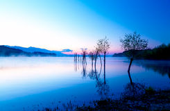 Beautiful landscape with a lake and mountains in the background and trees in the water. Blue and purple color tone. Royalty Free Stock Photos