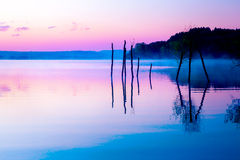 Beautiful landscape with a lake and mountains in the background and trees in the water. Blue and purple color tone. stock photo