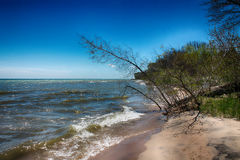 A Beautiful landscape. The lake shore at lake Michigan Stock Images
