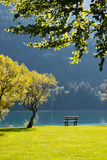 Picturesque lake view. Beautiful landscape with lake view. All illuminated by the Sun. There is a bench on the store of lake. Nobody is around. Silence and rest Royalty Free Stock Images