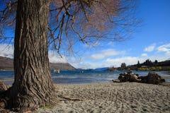 Beautiful landscape of lake wanaka in south island new zealand i Royalty Free Stock Photography