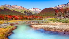 Beautiful landscape of lenga forest, mountains at Tierra del Fuego National Park, Patagonia. Autumn royalty free stock photos