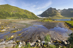 Beautiful landscape of Lofoten Islands Royalty Free Stock Image