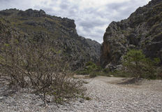 Beautiful landscape in Majorca. Royalty Free Stock Photography