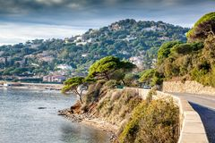 Beautiful landscape, Mediterranean Sea, Côte d`Azur, France, cl. Beautiful landscape, Mediterranean Sea, Côte d`Azur, France, cloudy weather, green pines Royalty Free Stock Photos