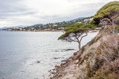 Beautiful landscape, Mediterranean Sea, Côte d`Azur, France, cl. Beautiful landscape, Mediterranean Sea, Côte d`Azur, France, cloudy weather, green pines Royalty Free Stock Photography