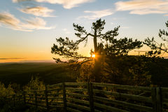 A beautiful landscape with a midnight sun above arctic circle. Stock Photos