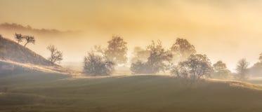 Free Beautiful Landscape Mountain Hill Meadow Sunrise Foggy Morning Village Bucovina Romania Stock Image - 161068151