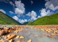 Beautiful landscape with mountain stream Royalty Free Stock Photo