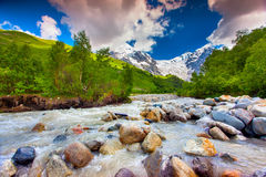 Beautiful landscape with mountain stream. Stock Image