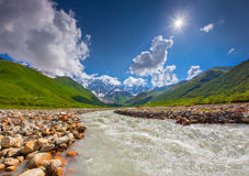 Beautiful landscape with mountain stream. Royalty Free Stock Images