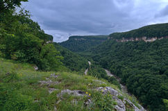 Beautiful landscape in a mountain valley. Summer green foliage o Royalty Free Stock Photography