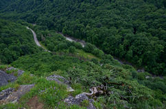 Beautiful landscape in a mountain valley. Summer green foliage o. Valley of the mountain river Belaya. Republic of Adygea. Western Caucasus. Russia Royalty Free Stock Photos