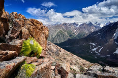 Beautiful landscape of mountains Stock Images