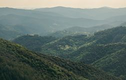 Beautiful landscape of natural reserve park in Cevennes, France Stock Photos