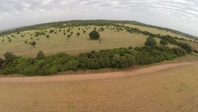 Beautiful Landscape of Nature and Farming - Aerial Flight, Mallorca stock video