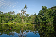 Beautiful landscape of nature reflected in amazon Stock Photography