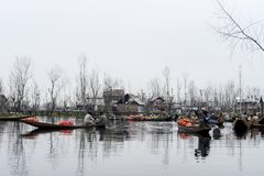 A beautiful landscape with a boats called `Shakira` near the lake in Kashmir India stock images