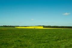The path to Stonehenge - beautiful landscape Stock Images