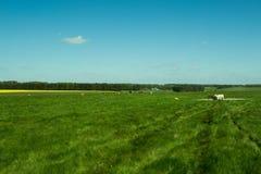 The path to Stonehenge - beautiful landscape Stock Photos