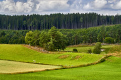 Beautiful landscape of Norway, Scandinavia, nature Royalty Free Stock Images