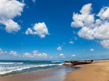 Beautiful landscape of ocean shore Stock Images