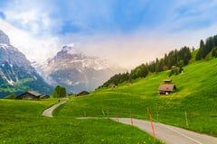 Free Beautiful Landscape Of Grindelwald , Switzerland Royalty Free Stock Image - 117752156