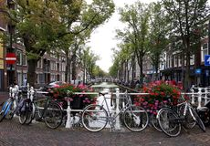 Beautiful landscape of old town Delft with flowers, canal and bikes. royalty free stock photo