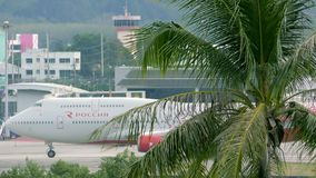 Beautiful landscape with palm tree and airplane drives along airport terminal stock video