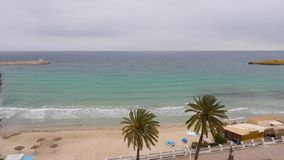 Beautiful landscape palm trees on sea coast and water waves on sandy beach seafront. Beautiful landscape palm trees on sea coast and water waves on sandy beach stock video footage