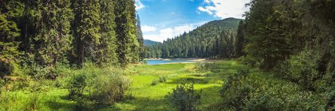 Beautiful landscape, panorama, banner, with a view of the lake Synevyr in the Carpathian Mountains. Western Ukraine Royalty Free Stock Photography