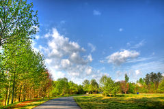 Beautiful Landscape in a Park Royalty Free Stock Images