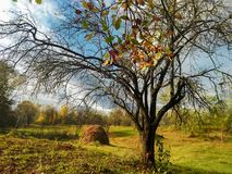 Beautiful landscape of a peacefull day in country village Prahova-Romania in autumn time royalty free stock photography