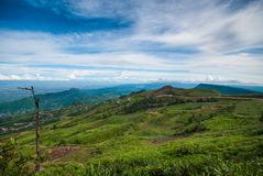 The Beautiful Landscape at Phu Tub Berk, Petchabun,Thailand Stock Photography