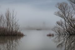 Beautiful landscape picture of a tree in a flooded lake royalty free stock photos