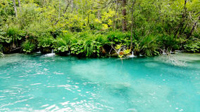 Beautiful landscape in the Plitvice Lakes Stock Images